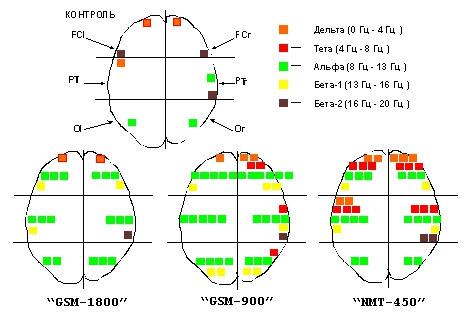 Действие радиоволн на головной мозг