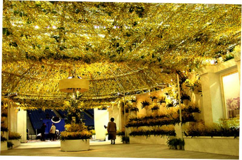 Международный фестиваль орхидеи в Токио