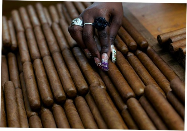 фестиваль кубинских сигар